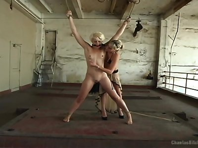 Strap-on nuisance fucking for sexy Audrey Leigh and Dylan Ryan